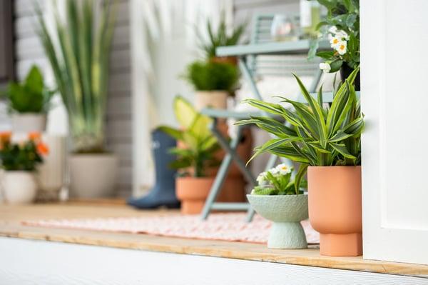 Spring_Exterior_New_Class_Home_Photos_Lifestyle_2019-20